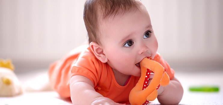Philips AVENT - Teething: your baby's first teeth